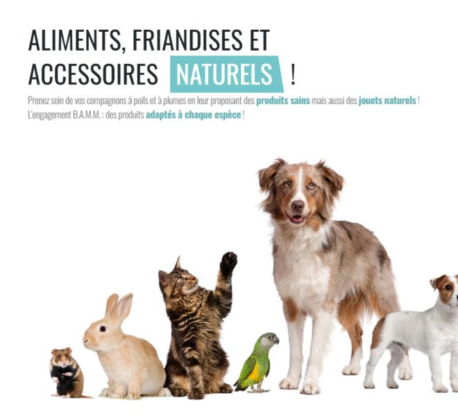 Accueil boutique animalerie en ligne